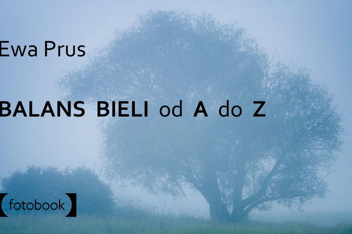 Balans bieli od A do Z - poradnik, ebook, książka do fotografii, WB