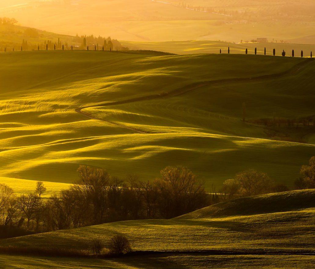 Toskania, wzgórza, światło, wschód słońca, warsztaty fotograficzne