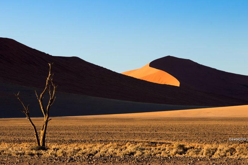 Wydmy w Namibii, selekcja zdjęć