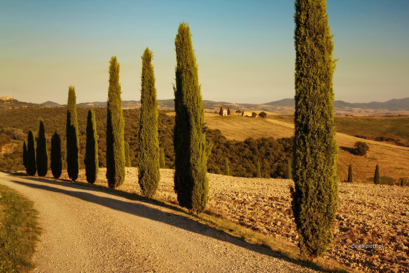 Aleja cyprysów, Toskania, jak działa kompresja perspektywy