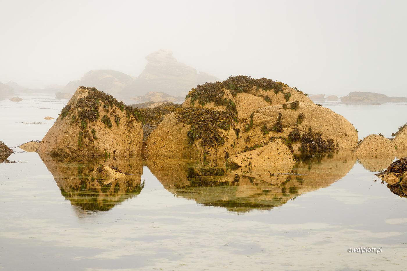 Znikające wyspy, Bretania, przypływ, wyprawa foto