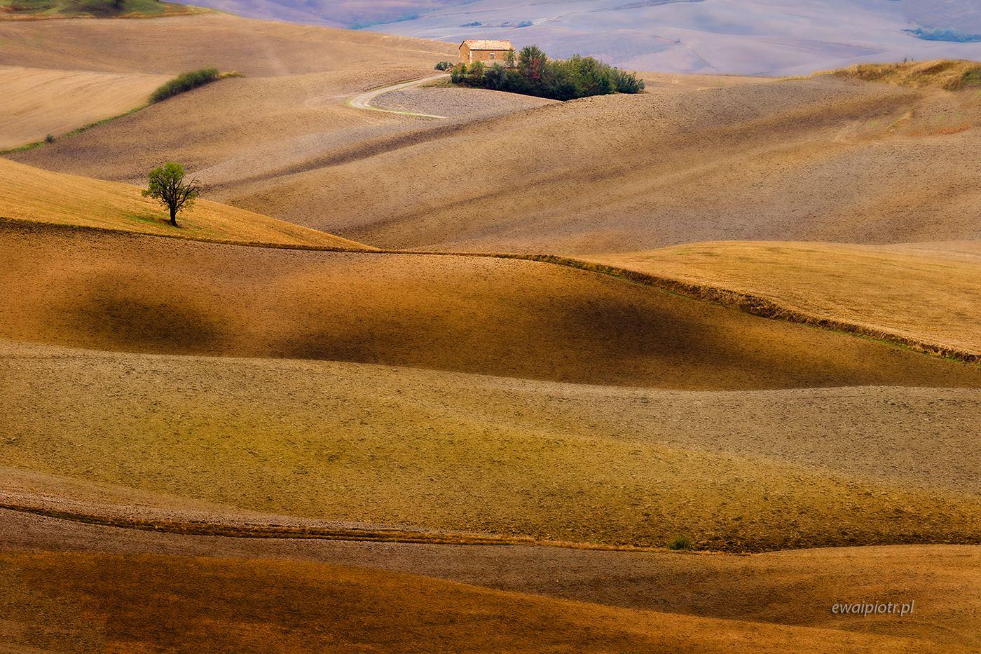 Jesienne pola pod Pienzą, Toskania, wyprawa fotograficzna