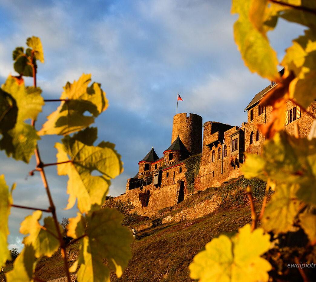 Zamek Thurant przez winorośl, Złoto Renu, fotowyprawa