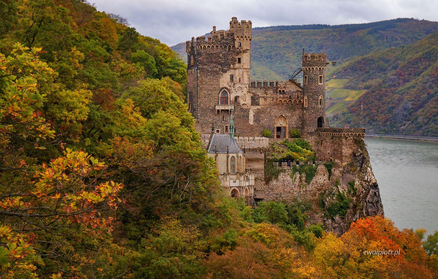 Zamek Rheinstein, Złoto Renu