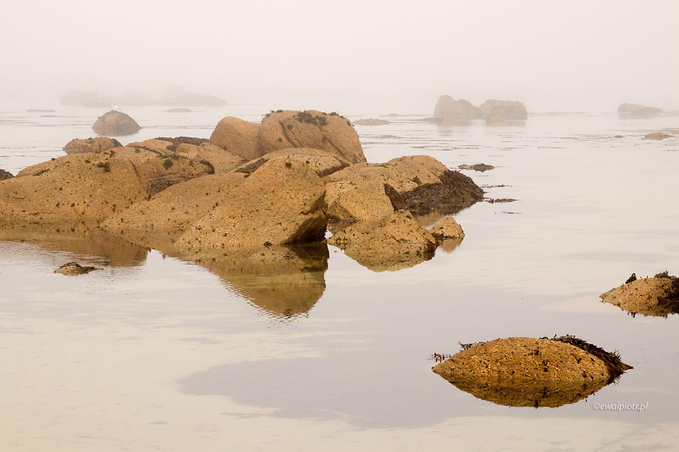 Wybrzeże Bretanii przy odpływie