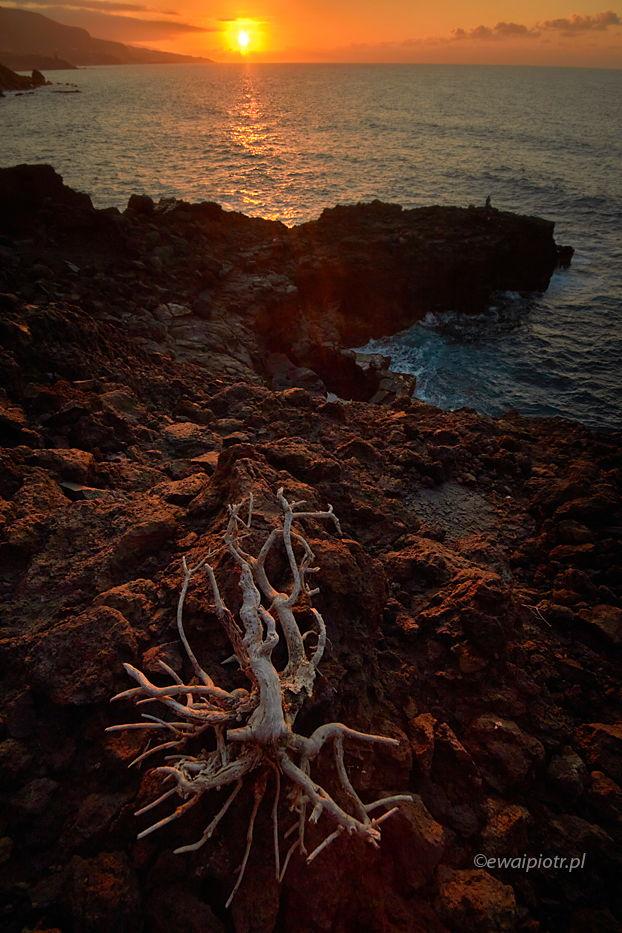 Wieczór na Teneryfie, Wyspy Kanaryjskie