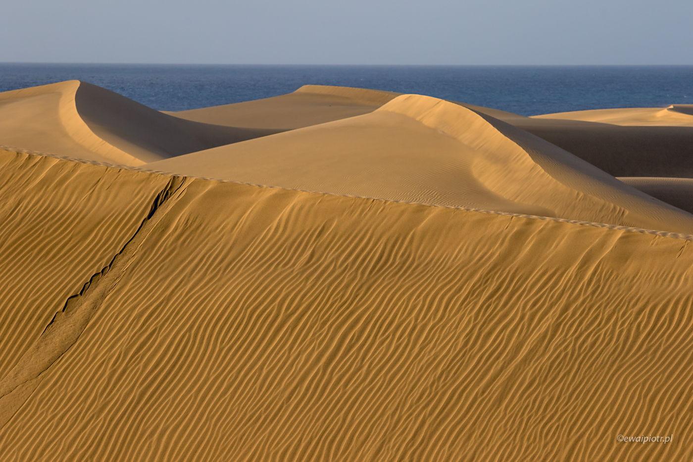Wydmy Maspalomas, Gran Canaria, Wyspy Kanaryjskie