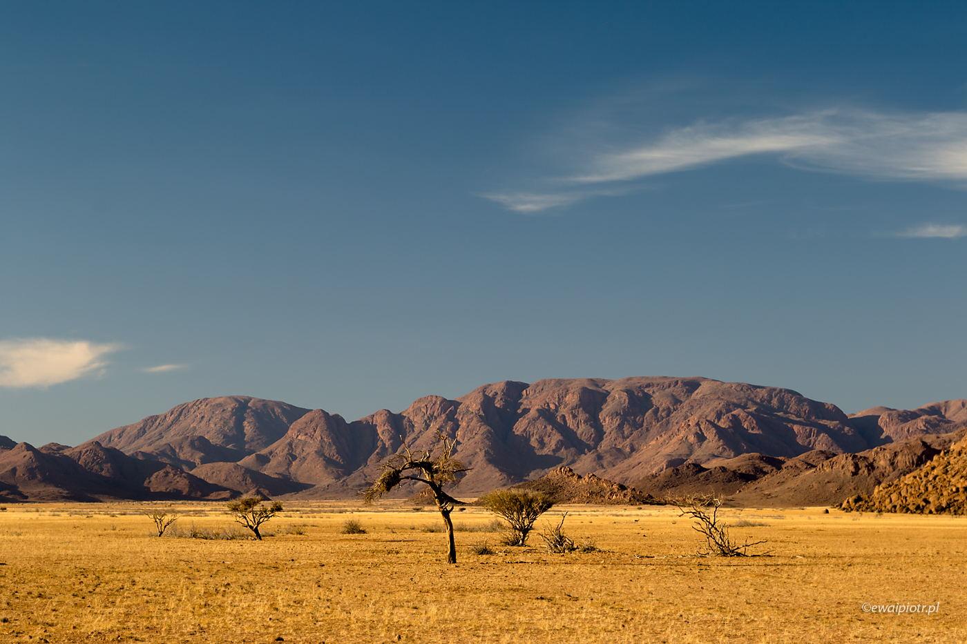 Pejzaże Namibii
