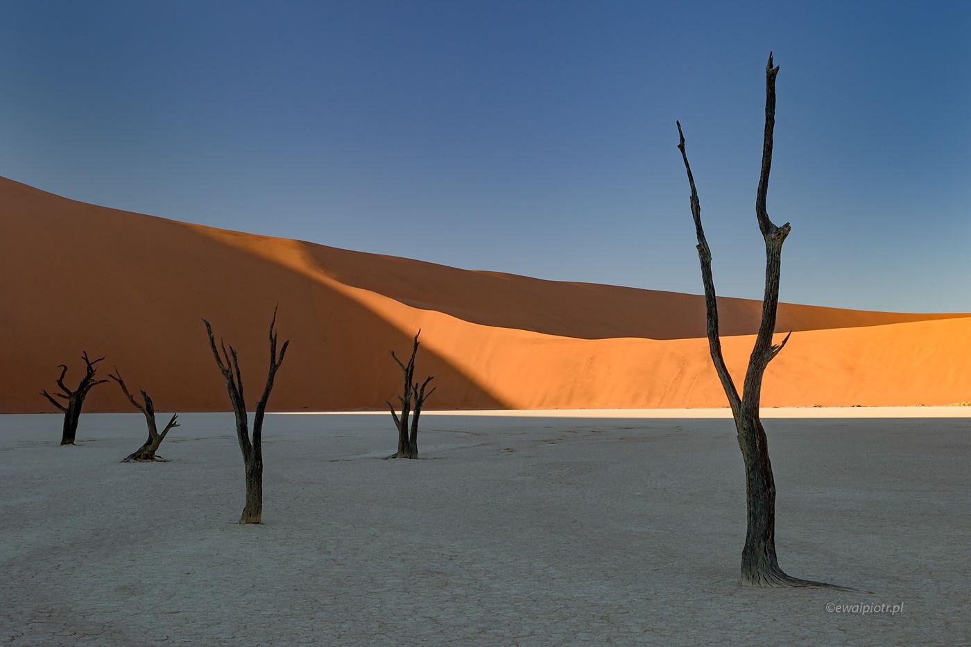 Wschód słońca na Deadvlei, Namibia