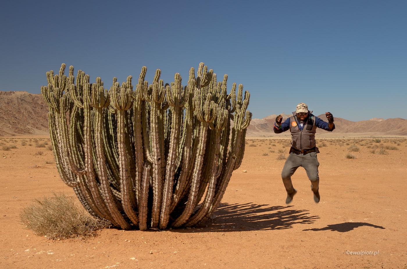 Ogromna Euphorbia i nasz lokalny przewodnik, Namibia