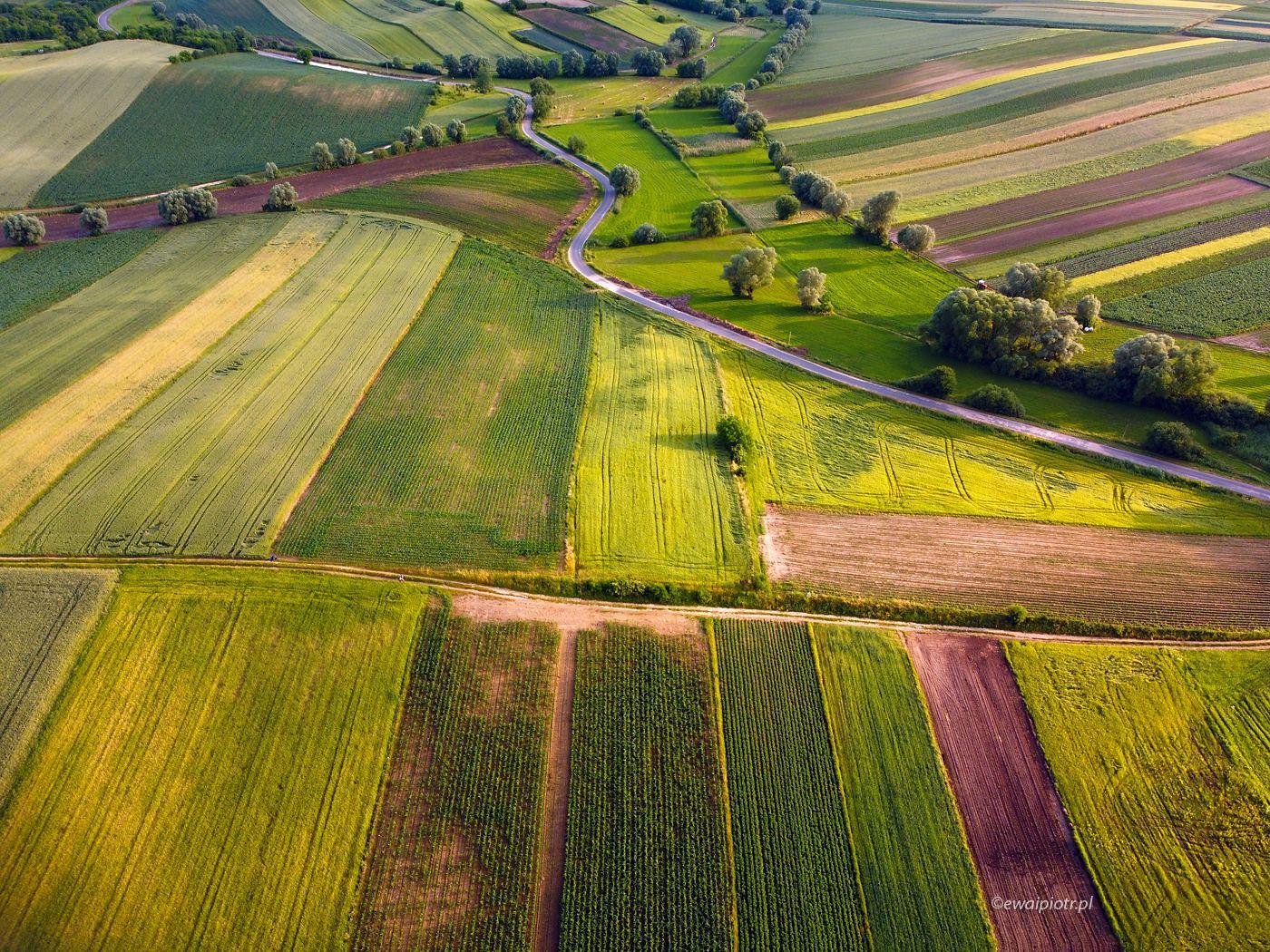 Świętokrzyskie pola, z drona, Mavic Mini