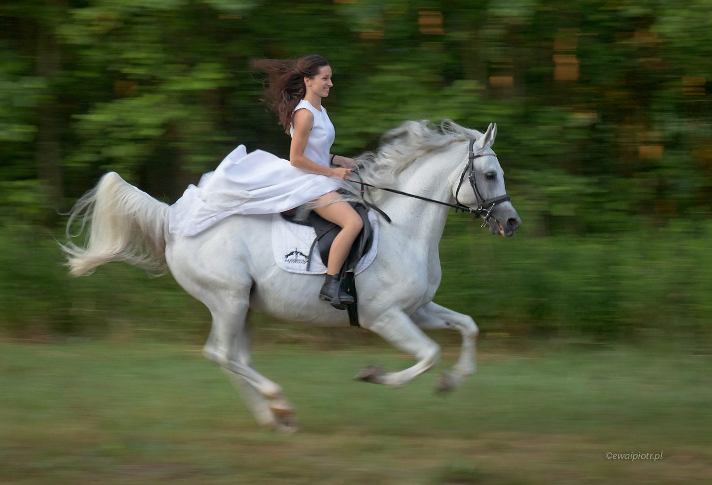 Dziewczyna na koniu, Świętokrzyskie, panoramowanie, paning