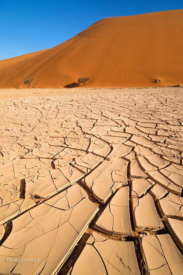 Spękana ziemia pod wydmą, Namibia