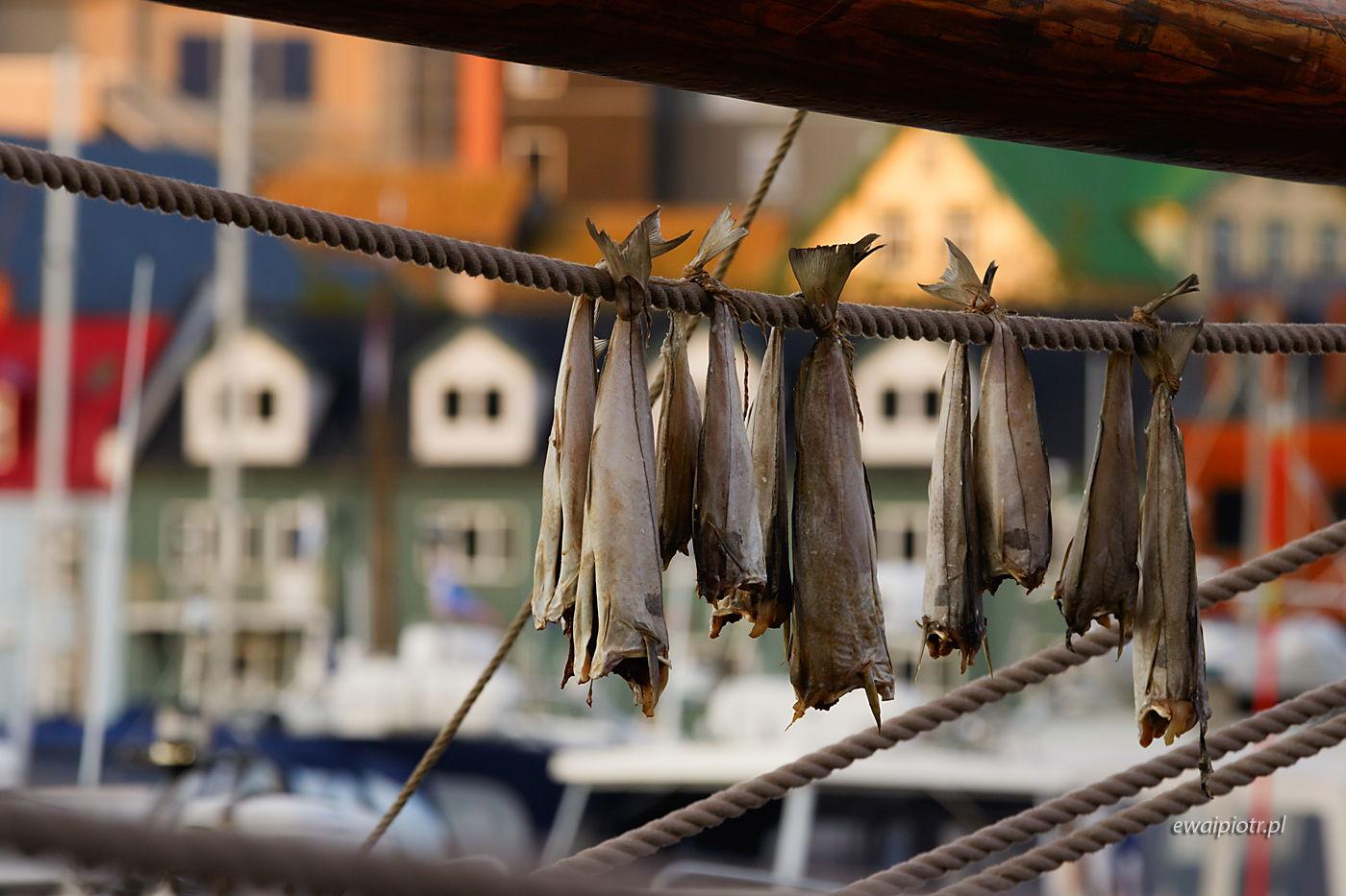 Sztokfisze w Torshavn, Wyspy Owcze