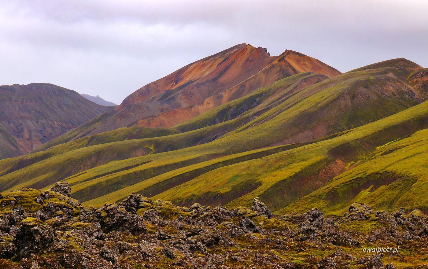 Zielone wzgórza Islandii